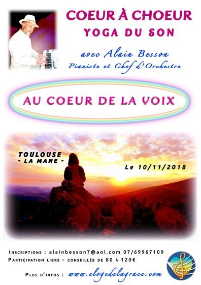 Toulouse 11 2018 recto copie